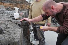 Monsterafname. Koolstofdatering plaatst het hout in de 9e of 10e eeuw. Bron: Arcadis