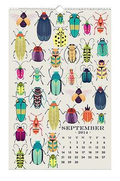 13 great calendars to get you through this year!