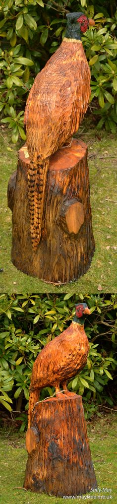Pheasant chainsaw carving by Sally May                                                                                                                                                                                 More