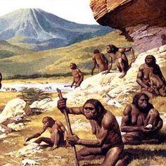 images.hellokids.com _uploads _tiny_galerie 20121146 australopithecus-group-gamee_3lu.jpg