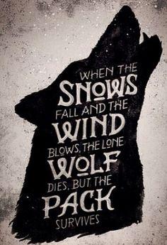 #wolf#pack#howl#die#death#deadwolf#words#wordsofbeauty