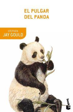 Il gioco del panda