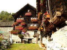 Premia - escursionismo  - Salecchio (Alpe)  da Passo, anello per Chioso e Alpe Vova - Piemonte