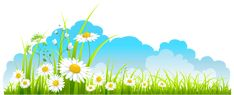 Spring Decor Sky Grass and Camomile PNG Clipart