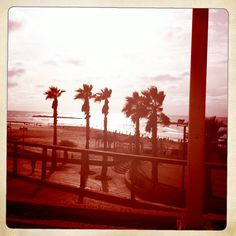 Tel Aviv Gordon Beach view