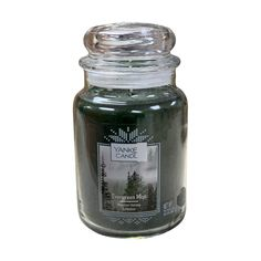 Yankee Candle Single Wick Scented Glass Candlelit Evergreen Mist #jarcandles