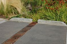 A trench drain leads to rain garden. Photo by R. Emanuel, OSU.