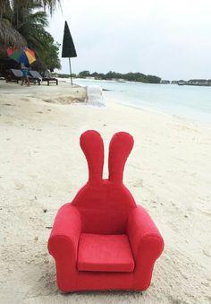 #Maldives #Honeydewrabbit #허니듀래빗