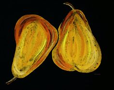 Two Pears - Yellow Gold Fruit Food Art Painting by Sharon Cummings - Two Pears - Yellow Gold Fruit Food Art Fine Art Prints and Posters for Sale