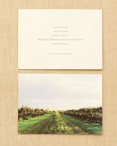 The Save-the-Date