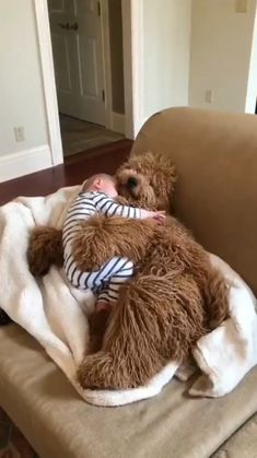 Cute Baby Dogs, Cute Funny Dogs, Cute Dogs And Puppies, Cute Funny Animals, Cute Babies, Cute Pets, Cute Funny Baby Videos, Doggies, Cute Animal Videos