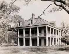 Three Oaks Plantation,  Louisiana.