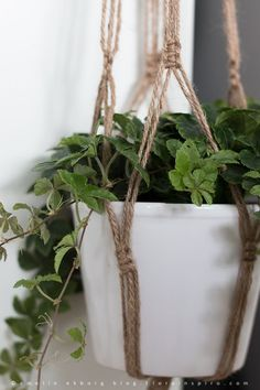 How to make a plant hanger in macrame