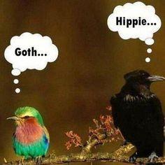 Goth versus Hippie.  #lol