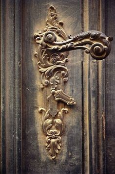elaborate door handle