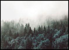Vackert print med natur