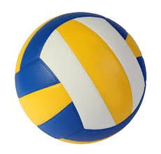 Le Volley Ball Ou Volleyball Est Un Sport Collectif Mettant En Jeu