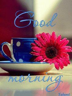 Good Morning My Friend ...