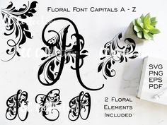 Mono Floral, Floral Font, Font Software, Typographic Design, Typography, Brush Font, Calligraphy Fonts, Monogram Initials