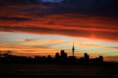 tripmii - New Zealand