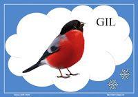 Kids And Parenting, Birds, Animals, Blog, Geography, Animales, Animaux, Bird, Animal
