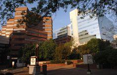 Vanderbilt University Medical Center | Vanderbilt University Medical Center (Vanderbilt University)