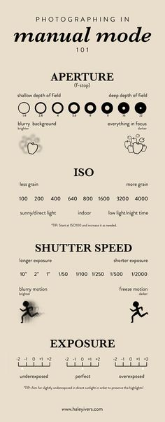 Photography Basics: Shooting in Manual Mode + FREE PRINTABLE — HALEY IVERS | Influencer and Content Creator