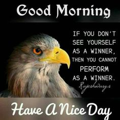 Top O The Morning, Morning Morning, Good Morning Wishes, Good Morning Quotes, Evening Quotes, Fb Quote, Lion Images, Happy Week, Meaningful Words