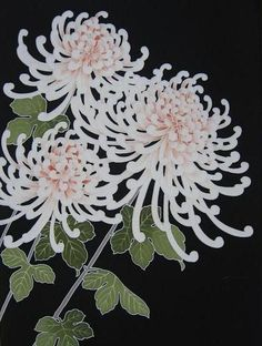 Kiku (菊) / chrysanthemum. Autumn.