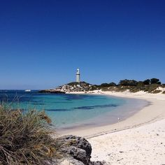 Perfect weather today on Rottnest Island. We spent the day exploring by bike and soaking up the sun rays at Pinky's Beach. Finishing up with a competitive game of Putt Putt Golf and yummy fish and chips for dinner! What was the highlight of your day?  #perthbeaches #perthisok #thisiswa #westisbest #ocean #waves #saltyair #sandytoes #amazing_wa #wawaters #rottnestisland #happyperth #puttputt by allthingsmeraki http://ift.tt/1L5GqLp