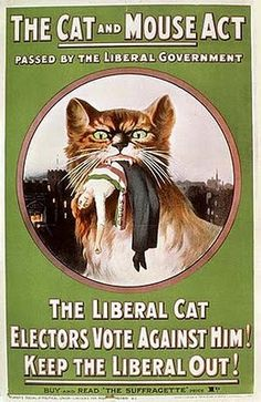 The Cat and Mouse Act of 1913 was the act that ended force-feedingof the Suffragettes who went on hunger strikes in prison