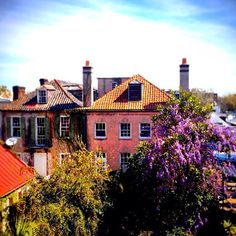 Photo of historic #Charleston courtesy of www.instagram.com/plantersinnchs