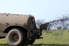 Dr Jerzy Jaśkowski: Uważaj co jesz! Toxic Foods, Monster Trucks, Vehicles, Thoughts, Brittany, Greenhouse Gases, Agriculture, Car