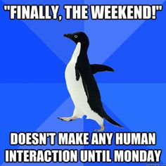 Socially Awkward Penguin - starts telling funny story realizes halfway through that nob
