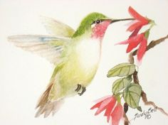 This reminds me of my mom.  She loved hummingbirds so much that God sent one to nest in her rosebush.