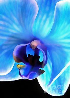 Believe In Blue ~Krissy Katsimbras