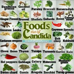 Foods that Kill Candida. I would add coconut water kefir and cultured vegetables. They have worked the BEST for me! busy moms, healthy moms, healthy food, health and fitness, healthy tips Anti Candida Diet, Candida Diet Recipes, Candida Yeast, Candida Cleanse, Candida Symptoms, Candida Diet Food List, Cleanse Diet, Diet Foods, Candida Overgrowth Symptoms