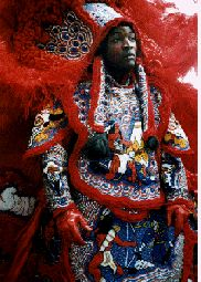 Mardi Gras , New Orleans Indian