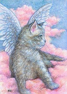 "ILLUSTRATIONS~ ""I count the planets, there are seven; I see the Moon shining bright, but my eyes only rest on the most dazzling of stars for its my cat telling me it's arrived safely in Heaven~ ""A New Arrival In Heaven,' C.C.Crystal."