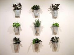 I am so going to do this! I have been looking fora cute way to display a kitchen herb garden.