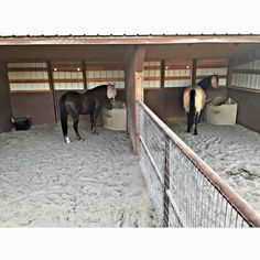Horse Paddock, Horse Stables, Horse Farms, Horse Shed, Horse Barn Plans, Simple Horse Barns, Horse Feeder, Horse Pens, Horse Barn Designs