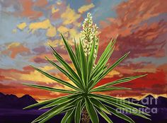 "<a href=""http://fineartamerica.com/art/paintings/cabo+san+lucas/all"" style=""font: 10pt arial; text-decoration: underline;"">cabo san lucas paintings for sale</a>"
