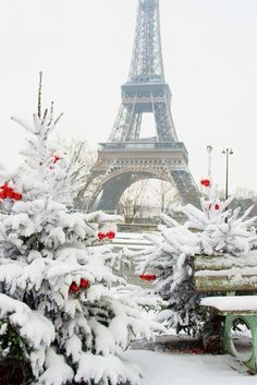 Christmas in Paris in the snow!..:)
