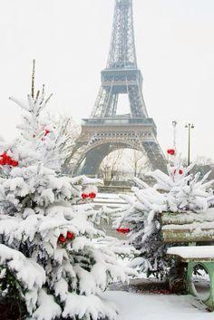 Christmas in Paris.......