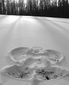 Snow angel - Winter - I will make one of these at the end of my snow covered dirt road :))