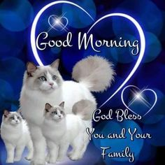 Good Morning, God Bless You And Your Family morning good morning morning quotes…