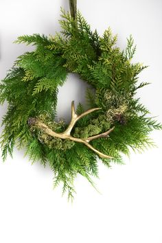 DIY Kranz mit Geweih und Highlights DIY wreath DIY easy and fast with thuja, pine, antlers and other natural materials.Thuja tie decoration decoration deco idea for winter and spring. Perfect for front door, windows and wall decoration. Simple Christmas, Christmas Diy, Christmas Wreaths, Christmas Decorations, Holiday Decor, Diy Nature, Couronne Diy, Crochet Christmas Wreath, Homemade Wreaths