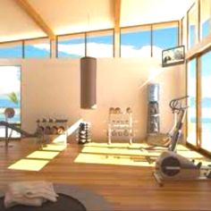 Dream home gym. Either in a loft with reinforced floors, walk-out basement, or separate structure on the property. Add a squat rack.