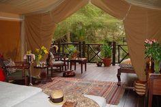 Safari glamping camping tent