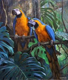Parrots - macaw - painting by Gabriel Hermida